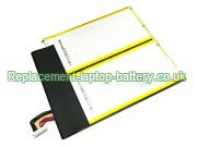 C21N1334 Battery, Asus C21N1334  Transformer Book T200TA  Battery Replacement