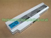 NEC PC-VP-WP94, OP-570-76969 Series Battery 10.8V Grey