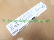 Samsung AA-PC0TC4W, AA-PB0TC4B, AA-PB0TC4M, NP-N310, N310 Series Battery White